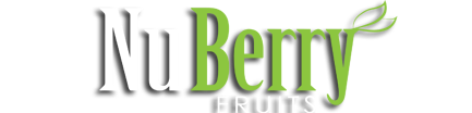 NuBerry Fruits (Pty) Ltd